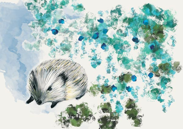 Greeting-Card-2-Hedgehog-Little-Cloud
